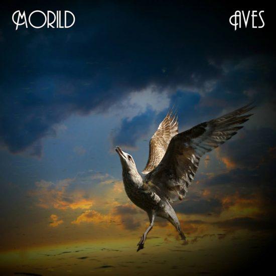 Morild – Aves