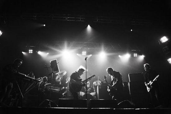 Swans Band