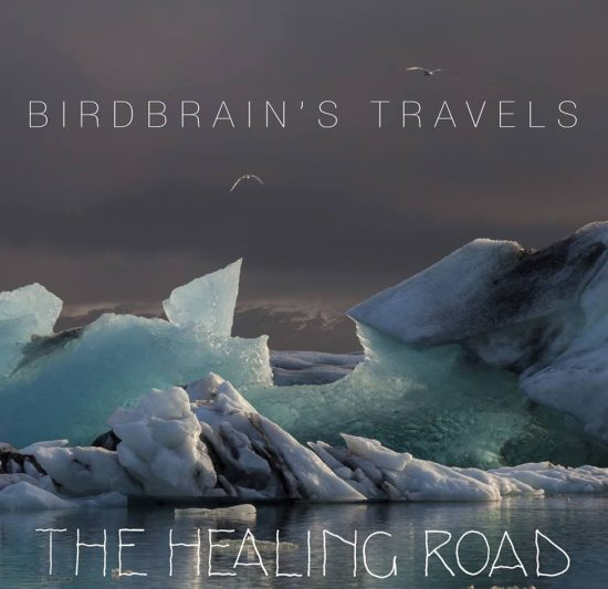 The Healing Road Birdbrain's Travel