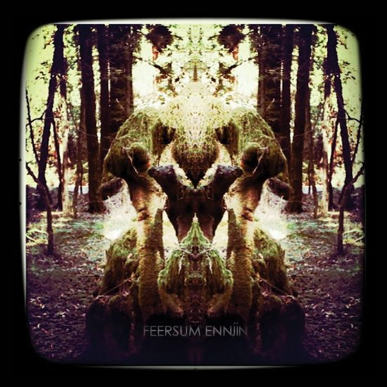 feersum ennjin-album cover