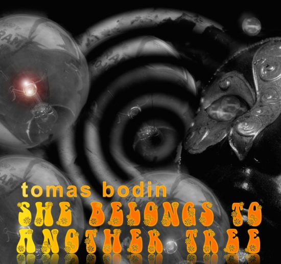 Tomas Bodin-She belongs to another tree