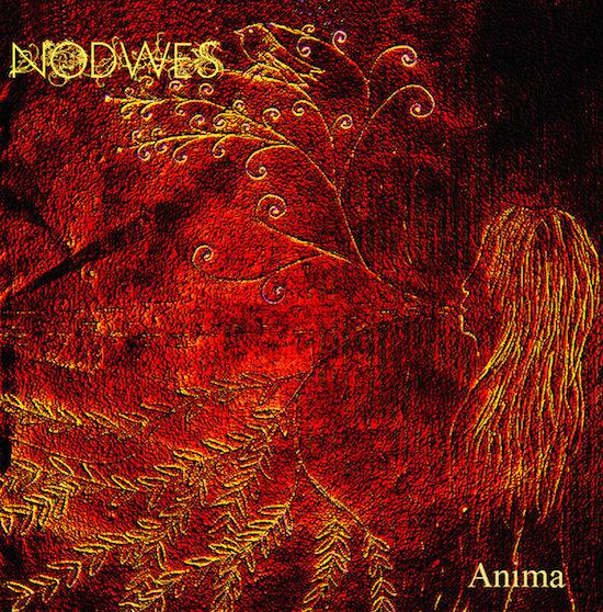 Nodwes - Anima