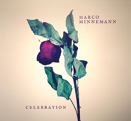 Marco Minnemann Celebration
