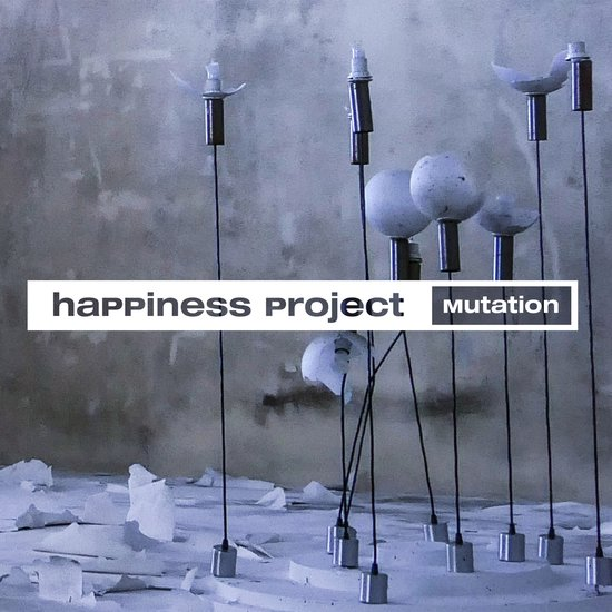 Happiness Project Mutation