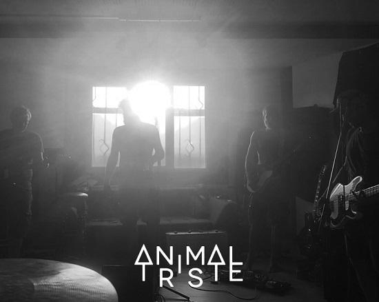 Animal Triste Animal Triste band 2